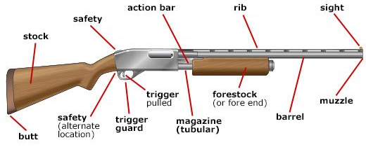 gun_parts_shotgun-e1517289094128.jpg