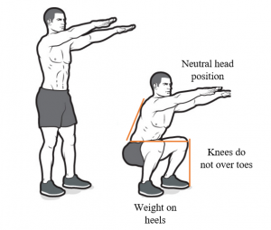 Squat-variations-how-to-do-bodyweight-squat-300x255